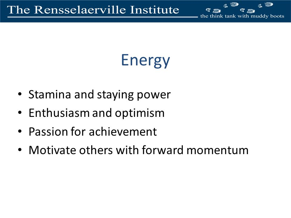 Energy Stamina and staying power Enthusiasm and optimism Passion for achievement Motivate others with forward momentum