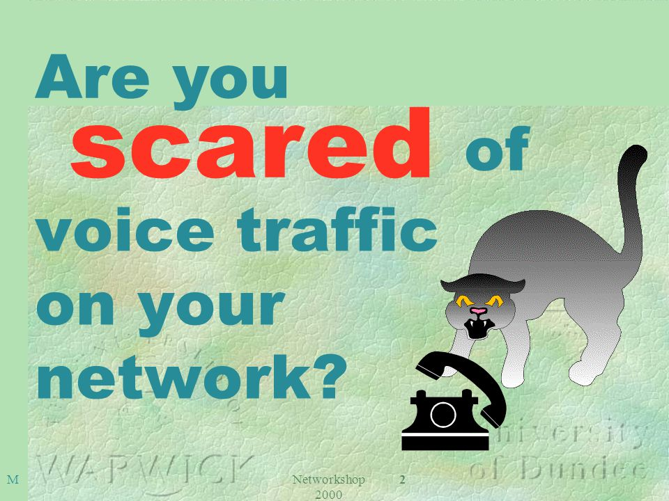 Networkshop 2000 2 voice traffic on your network M Are you scared of
