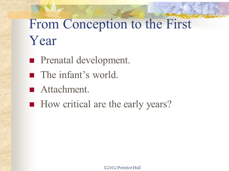 ©2002 Prentice Hall From Conception to the First Year Prenatal development. The infants world. Attachment. How critical are the early years?