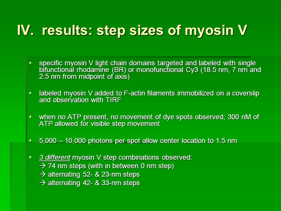 IV. results: step sizes of myosin V specific myosin V light chain domains targeted and labeled with single bifunctional rhodamine (BR) or monofunction