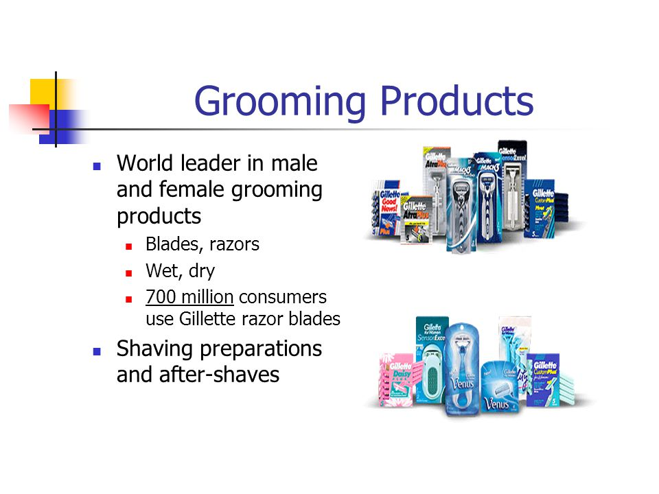 Grooming Products World leader in male and female grooming products Blades, razors Wet, dry 700 million consumers use Gillette razor blades Shaving pr