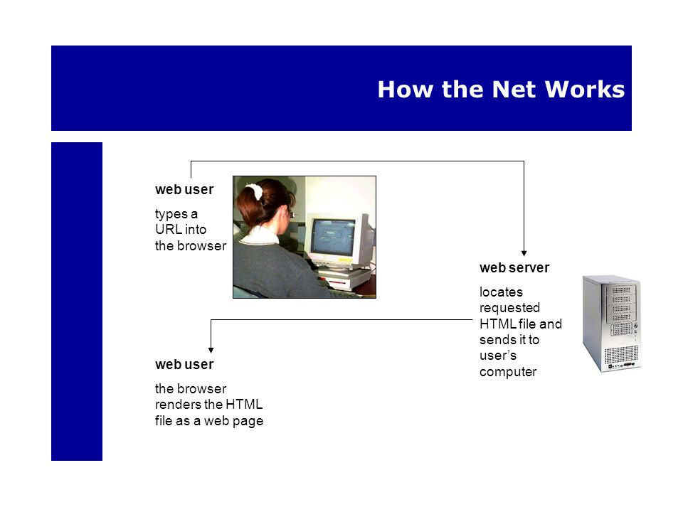 How the Net Works web server locates requested HTML file and sends it to users computer web user types a URL into the browser web user the browser ren