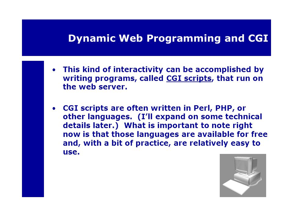 Dynamic Web Programming and CGI This kind of interactivity can be accomplished by writing programs, called CGI scripts, that run on the web server.