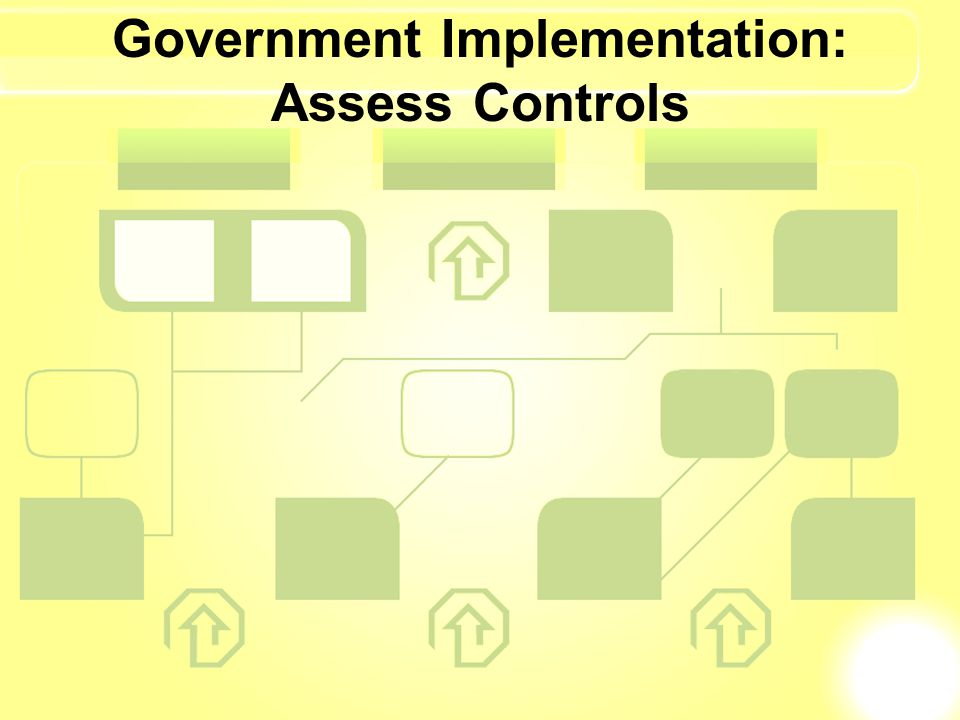 Government Implementation: Assess Controls