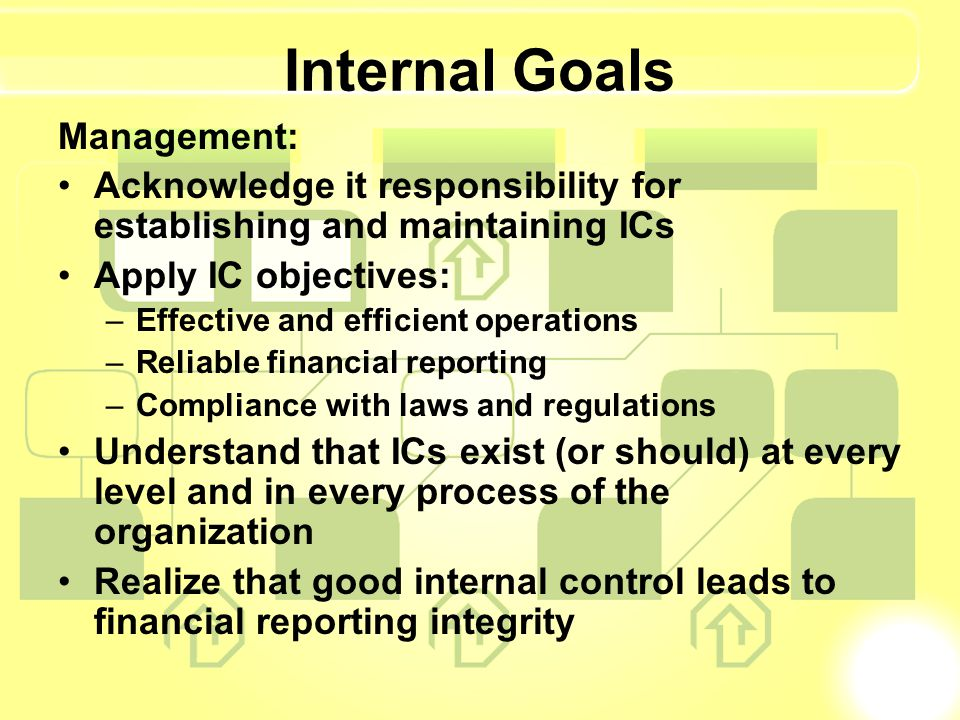 Internal Goals Management: Acknowledge it responsibility for establishing and maintaining ICs Apply IC objectives: –Effective and efficient operations