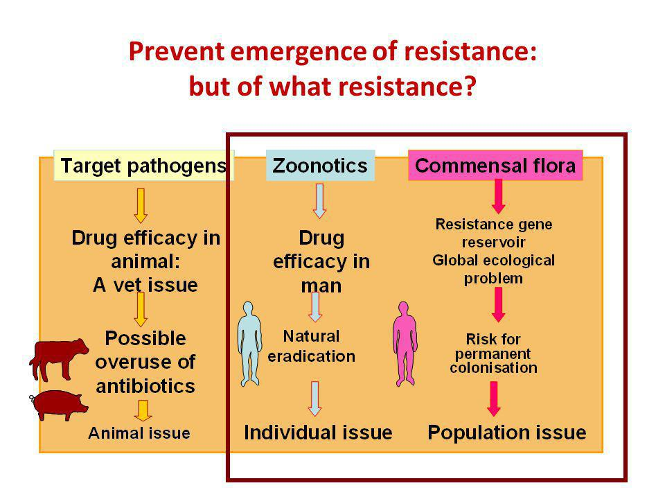 Prevent emergence of resistance: but of what resistance?