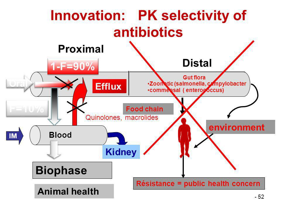 - 52 Innovation: PK selectivity of antibiotics environment Proximal Distal Blood Gut flora Zoonotic (salmonella, campylobacter commensal ( enterococcu