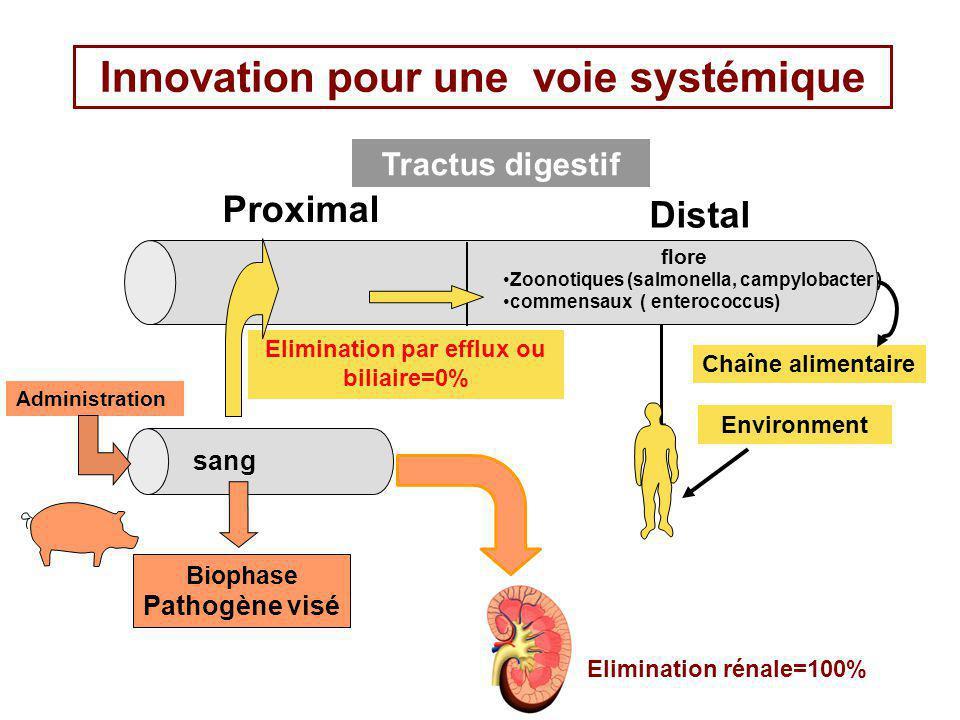 Innovation pour une voie systémique Tractus digestif Proximal Distal Biophase Pathogène visé sang Chaîne alimentaire Environment Administration Elimin