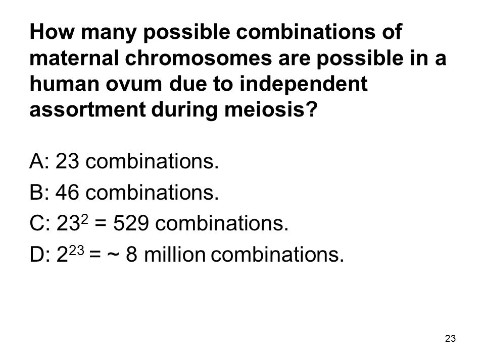 23 How many possible combinations of maternal chromosomes are possible in a human ovum due to independent assortment during meiosis? A: 23 combination