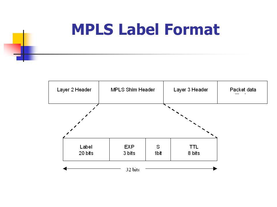 MPLS Label Format