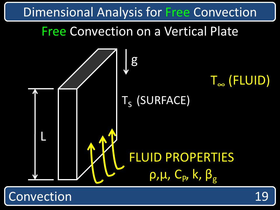 Convection 19 Dimensional Analysis for Free Convection T S (SURFACE) T (FLUID) g L FLUID PROPERTIES ρ,µ, C P, k, β g Free Convection on a Vertical Pla