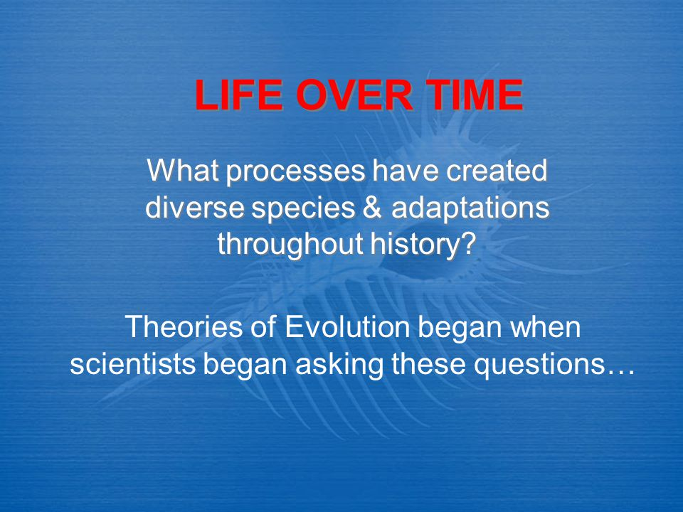 LIFE OVER TIME What processes have created diverse species & adaptations throughout history? Theories of Evolution began when scientists began asking