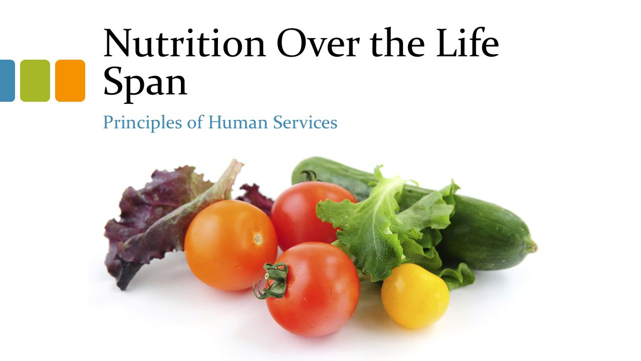 Nutrition Over the Life Span Principles of Human Services