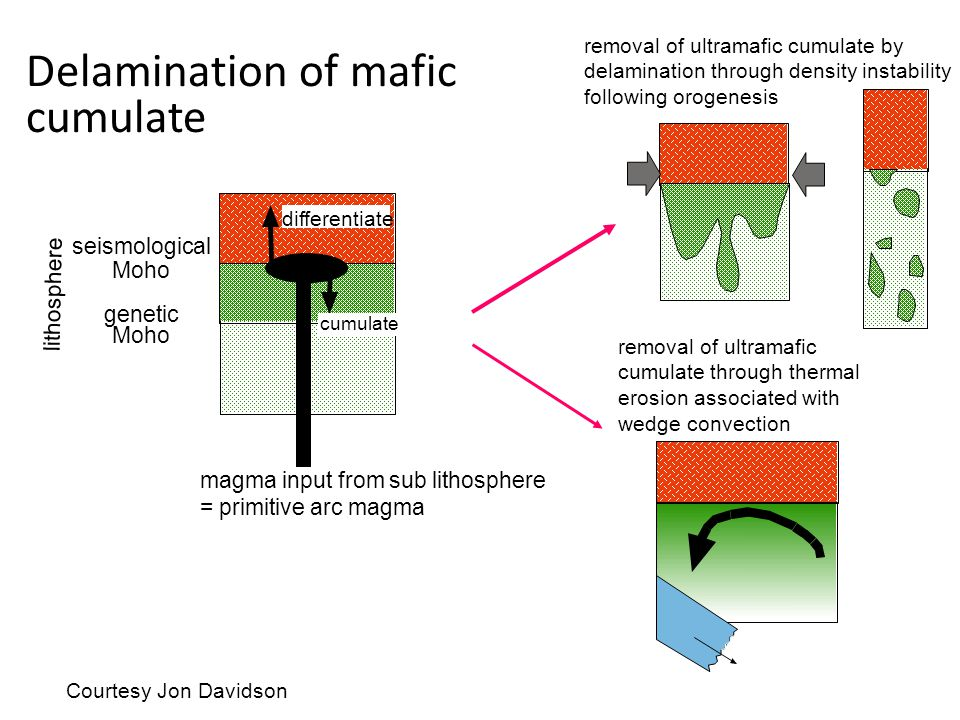 Delamination of mafic cumulate removal of ultramafic cumulate by delamination through density instability following orogenesis differentiate cumulate magma input from sub lithosphere = primitive arc magma seismological Moho genetic Moho lithosphere removal of ultramafic cumulate through thermal erosion associated with wedge convection Courtesy Jon Davidson