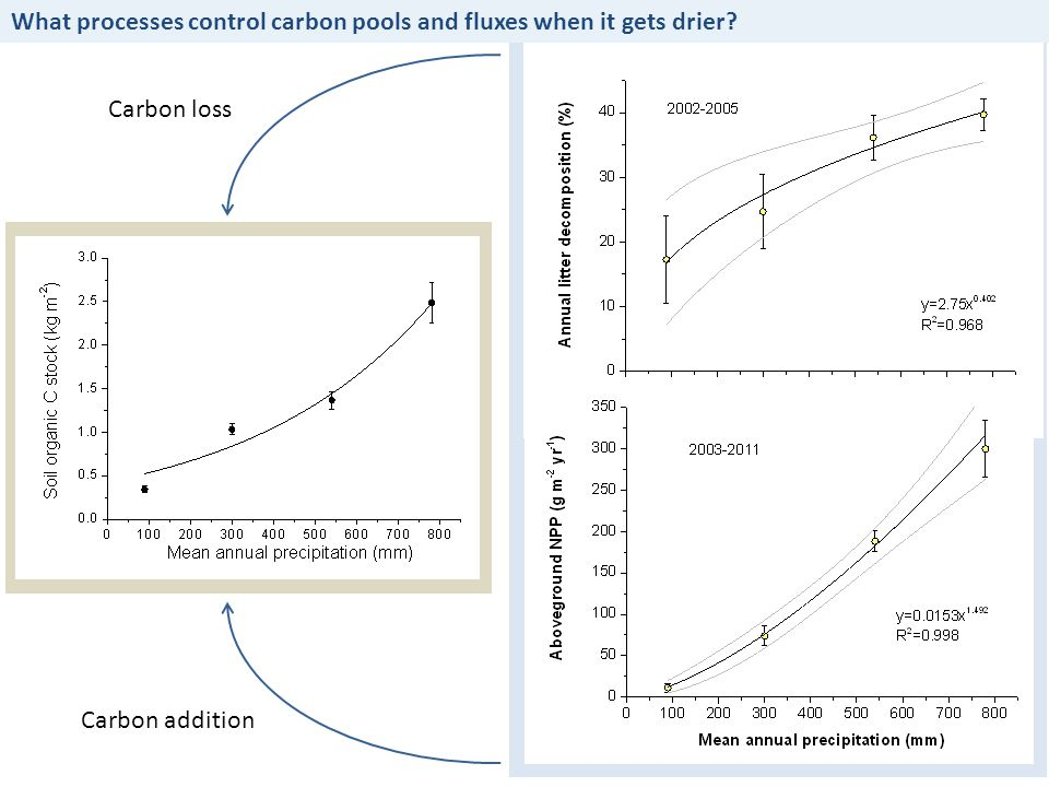 What processes control carbon pools and fluxes when it gets drier? Carbon loss Carbon addition