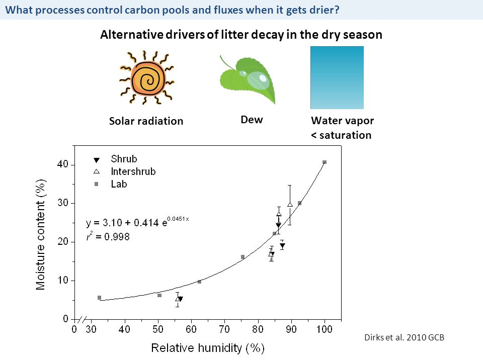 Alternative drivers of litter decay in the dry season What processes control carbon pools and fluxes when it gets drier.