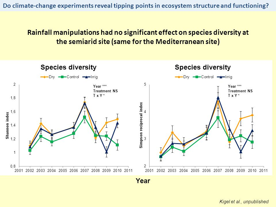Rainfall manipulations had no significant effect on species diversity at the semiarid site (same for the Mediterranean site) Kigel et al., unpublished Year Year *** Treatment NS T x Y * Year *** Treatment NS T x Y * Do climate-change experiments reveal tipping points in ecosystem structure and functioning?