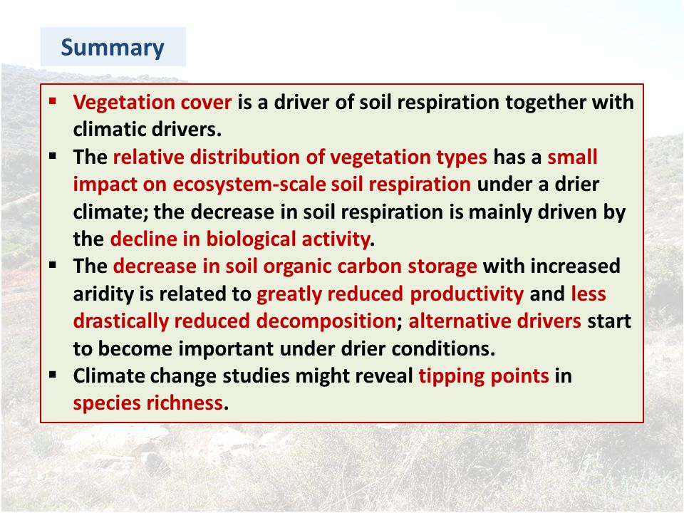 Summary Vegetation cover is a driver of soil respiration together with climatic drivers.