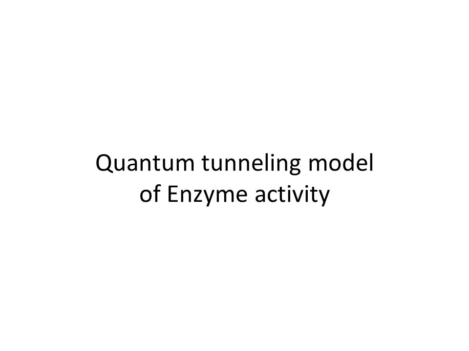 Quantum tunneling model of Enzyme activity