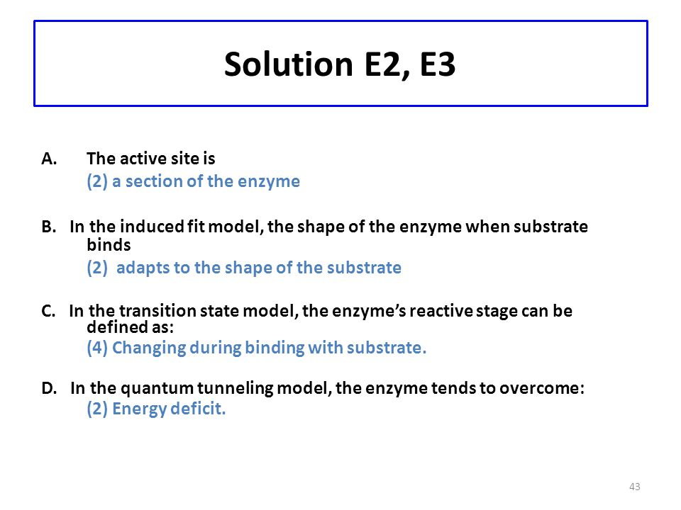 43 Solution E2, E3 A.The active site is (2) a section of the enzyme B. In the induced fit model, the shape of the enzyme when substrate binds (2) adap