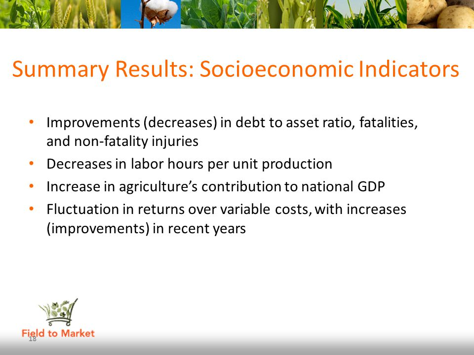 Summary Results: Socioeconomic Indicators Improvements (decreases) in debt to asset ratio, fatalities, and non-fatality injuries Decreases in labor hours per unit production Increase in agricultures contribution to national GDP Fluctuation in returns over variable costs, with increases (improvements) in recent years 18