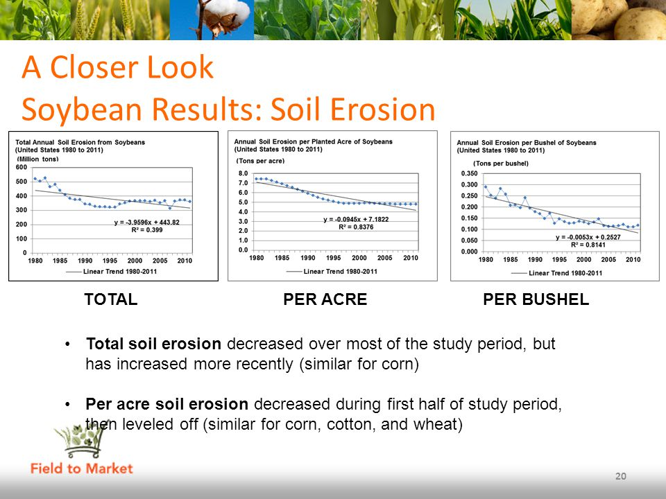 A Closer Look Soybean Results: Soil Erosion 20 Total soil erosion decreased over most of the study period, but has increased more recently (similar for corn) Per acre soil erosion decreased during first half of study period, then leveled off (similar for corn, cotton, and wheat) TOTALPER ACREPER BUSHEL