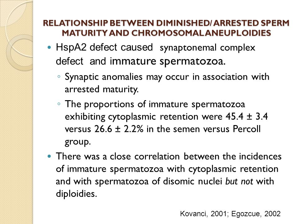 RELATIONSHIP BETWEEN DIMINISHED/ ARRESTED SPERM MATURITY AND CHROMOSOMAL ANEUPLOIDIES HspA2 defect caused synaptonemal complex defect and i mmature sp