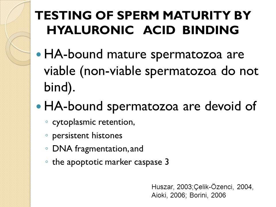 HA-bound mature spermatozoa are viable (non-viable spermatozoa do not bind). HA-bound spermatozoa are devoid of cytoplasmic retention, persistent hist