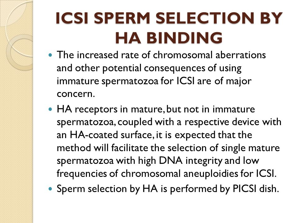ICSI SPERM SELECTION BY HA BINDING The increased rate of chromosomal aberrations and other potential consequences of using immature spermatozoa for IC
