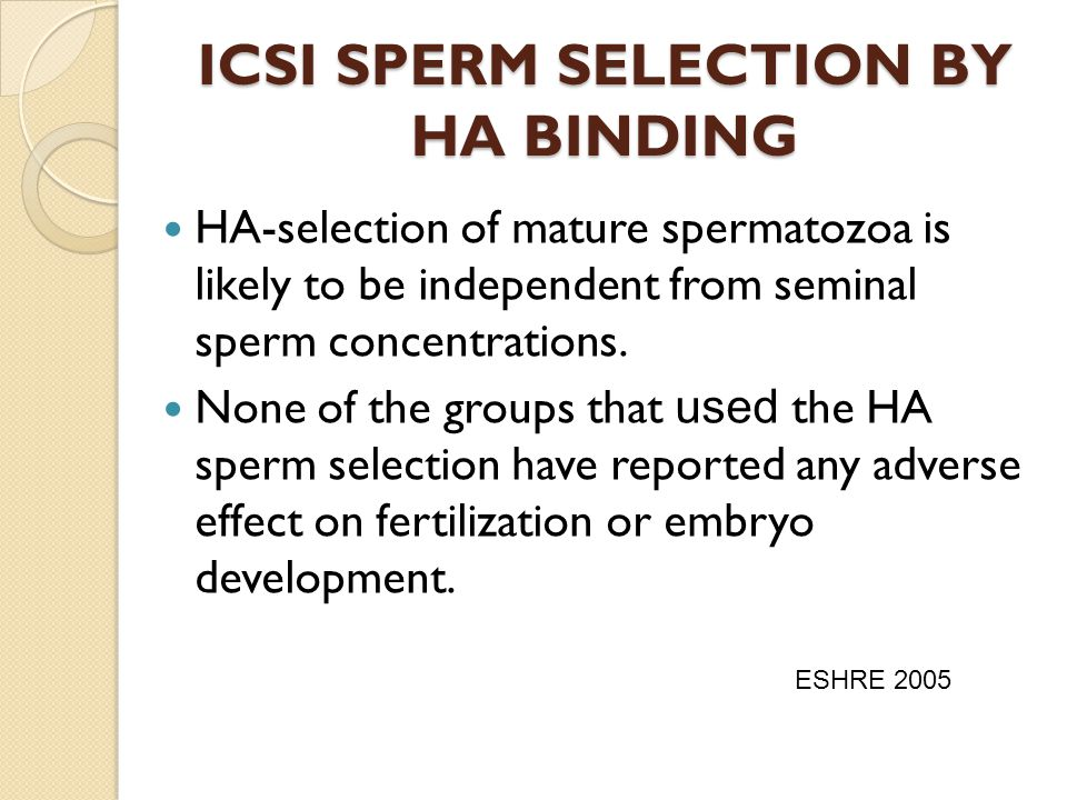 ICSI SPERM SELECTION BY HA BINDING HA-selection of mature spermatozoa is likely to be independent from seminal sperm concentrations. None of the group