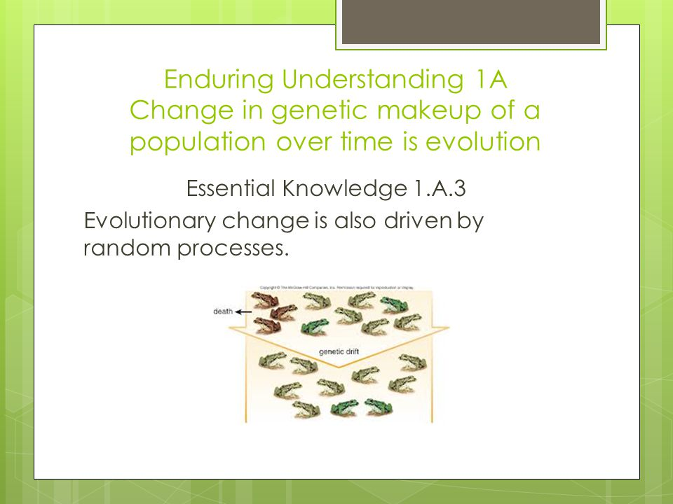 Enduring Understanding 1A Change in genetic makeup of a population over time is evolution Essential Knowledge 1.A.3 Evolutionary change is also driven