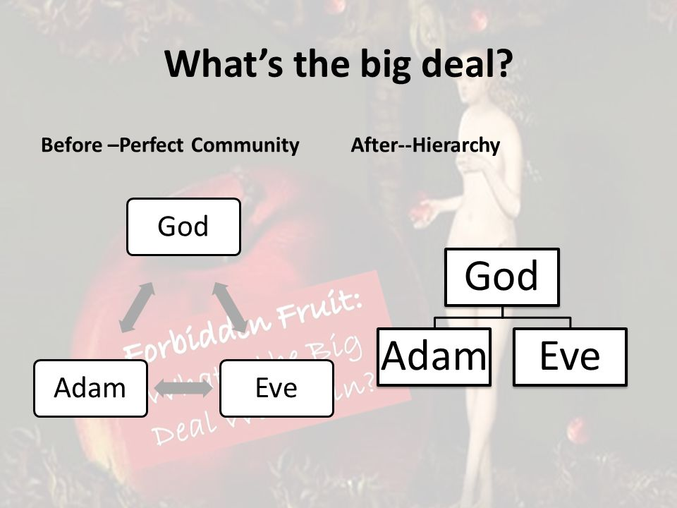 Whats the big deal Before –Perfect Community GodEveAdam After--Hierarchy God AdamEve