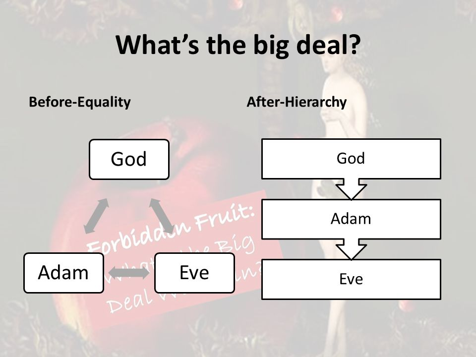 Whats the big deal Before-EqualityAfter-Hierarchy Eve Adam God EveAdam