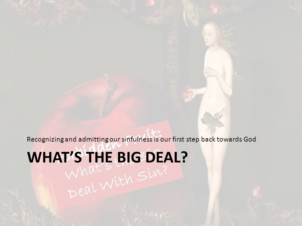 WHATS THE BIG DEAL Recognizing and admitting our sinfulness is our first step back towards God