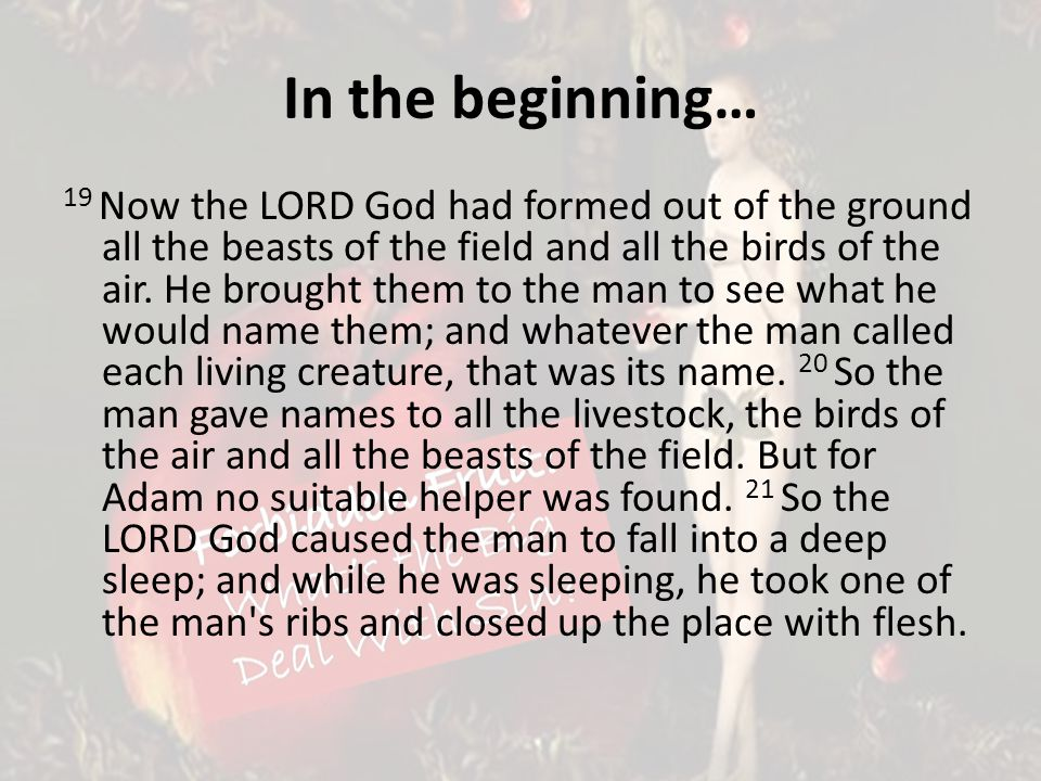 In the beginning… 19 Now the LORD God had formed out of the ground all the beasts of the field and all the birds of the air.