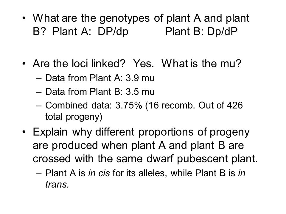 What are the genotypes of plant A and plant B.Plant A: DP/dpPlant B: Dp/dP Are the loci linked.