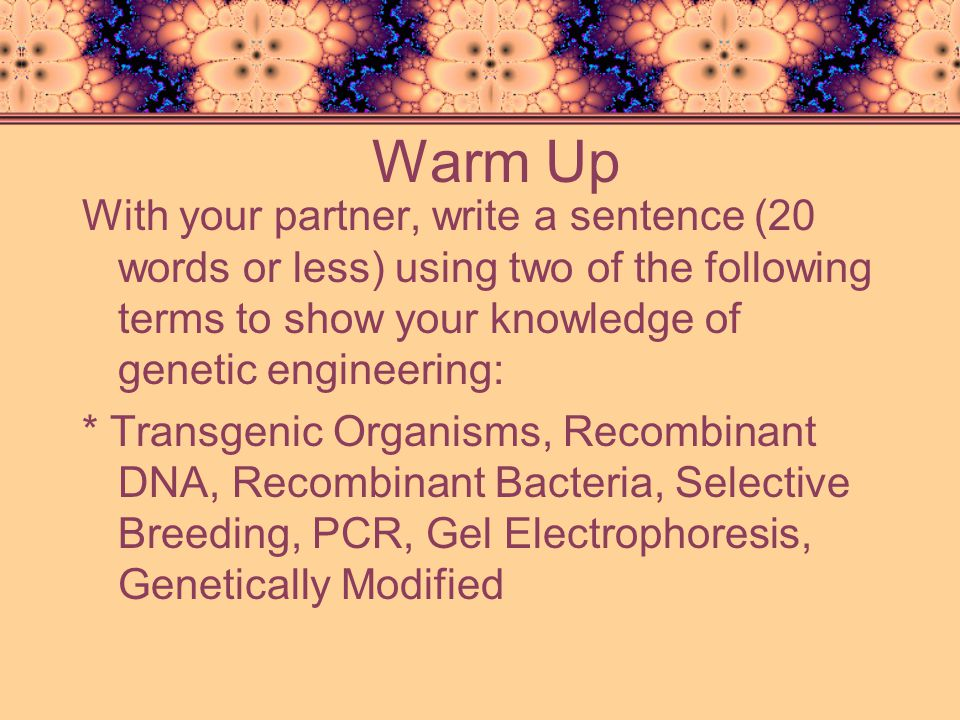 Warm Up With your partner, write a sentence (20 words or less) using two of the following terms to show your knowledge of genetic engineering: * Trans