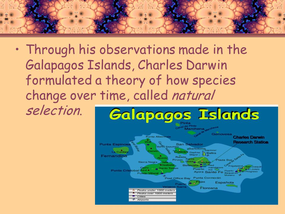 Through his observations made in the Galapagos Islands, Charles Darwin formulated a theory of how species change over time, called natural selection.
