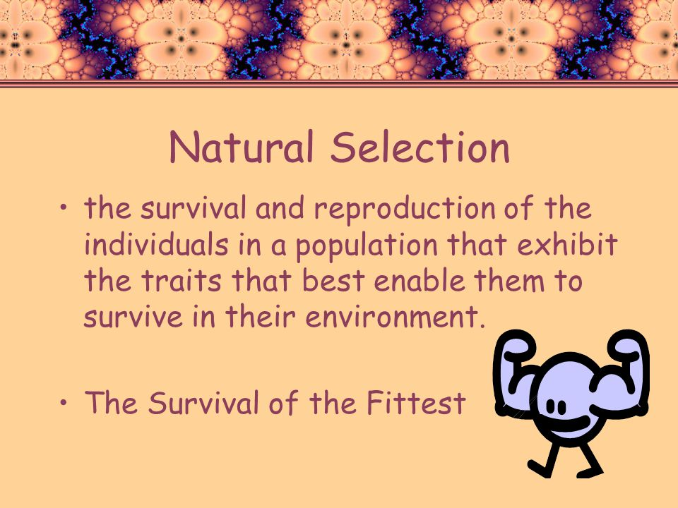 Natural Selection the survival and reproduction of the individuals in a population that exhibit the traits that best enable them to survive in their e