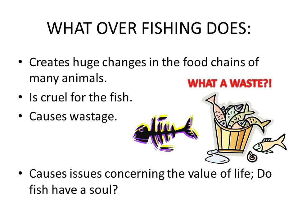 WHAT OVER FISHING DOES: Creates huge changes in the food chains of many animals. Is cruel for the fish. Causes wastage. Causes issues concerning the v