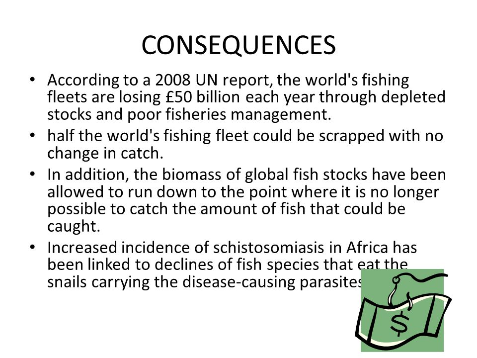 CONSEQUENCES According to a 2008 UN report, the world's fishing fleets are losing £50 billion each year through depleted stocks and poor fisheries man