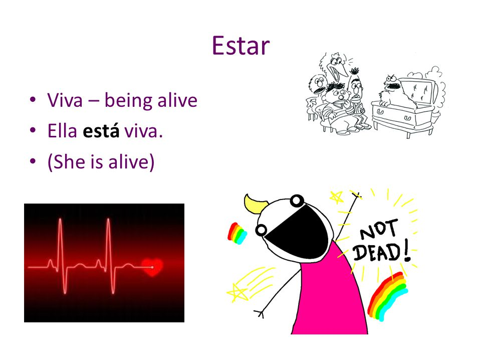 Estar Viva – being alive Ella está viva. (She is alive)