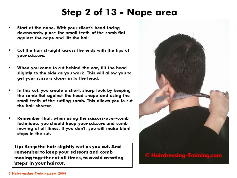 © Hairdressing-Training.com 2004 Step 2 of 13 - Nape area Start at the nape. With your client's head facing downwards, place the small teeth of the co