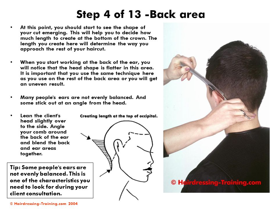 © Hairdressing-Training.com 2004 Step 4 of 13 -Back area At this point, you should start to see the shape of your cut emerging. This will help you to