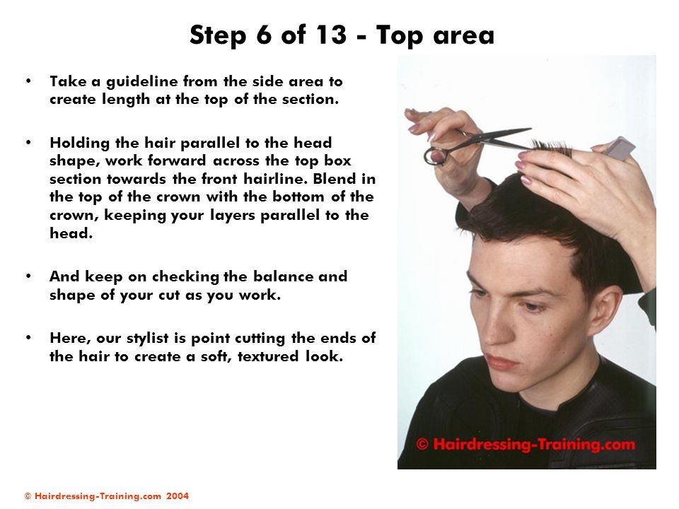 © Hairdressing-Training.com 2004 Step 6 of 13 - Top area Take a guideline from the side area to create length at the top of the section. Holding the h