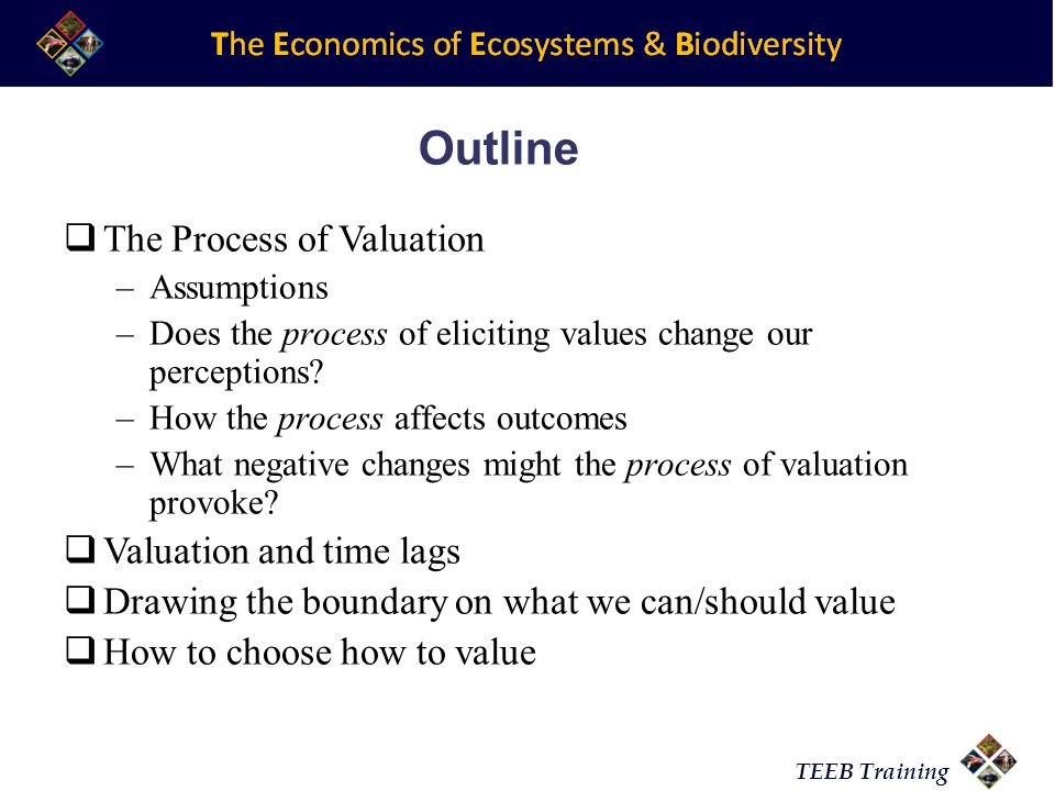 TEEB Training Outline The Process of Valuation –Assumptions –Does the process of eliciting values change our perceptions.