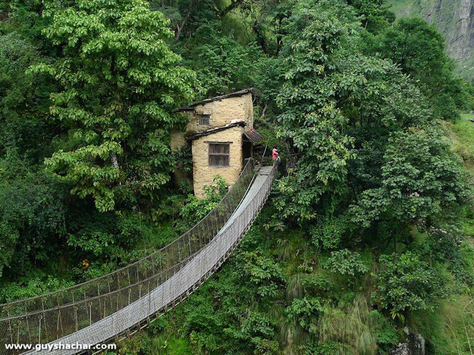 Excitement at its peak – the longest, most dilapidated wooden cantilever bridge.