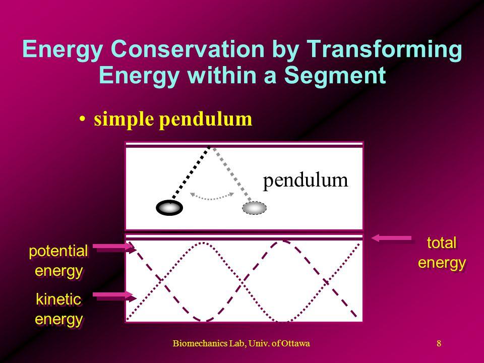 Biomechanics Lab, Univ. of Ottawa8 Energy Conservation by Transforming Energy within a Segment simple pendulum pendulum potential energy total energy