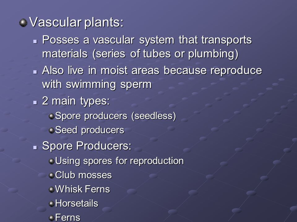Vascular plants: Posses a vascular system that transports materials (series of tubes or plumbing) Posses a vascular system that transports materials (