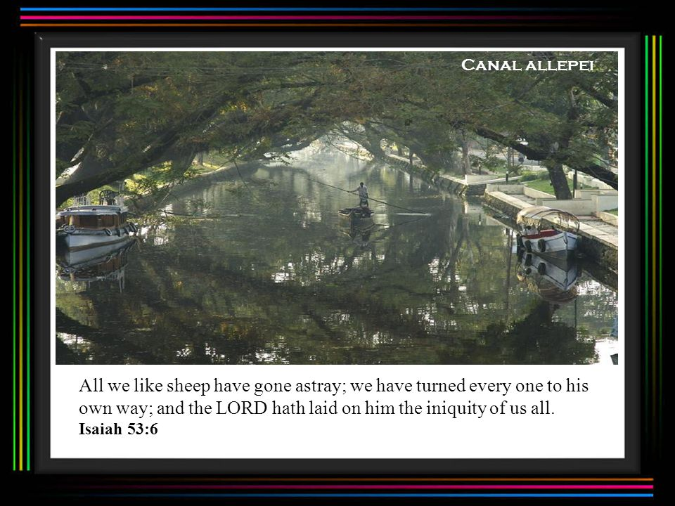 Canal allepei All we like sheep have gone astray; we have turned every one to his own way; and the LORD hath laid on him the iniquity of us all.
